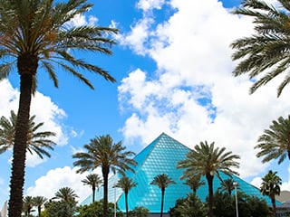 Your Choice: Aquarium or Rainforest and 3-D Theatre