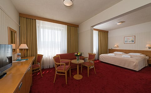 Junior Suite (Palace Flügel)