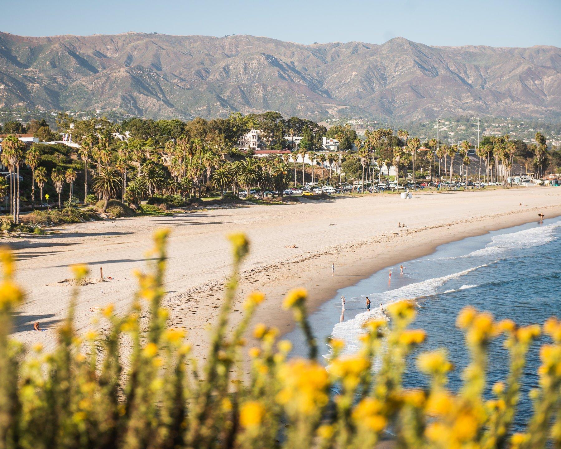 Santa Barbara Savvy Promotion