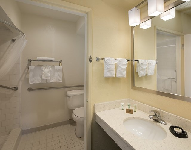 Traditional Double ADA with Walk-in Shower